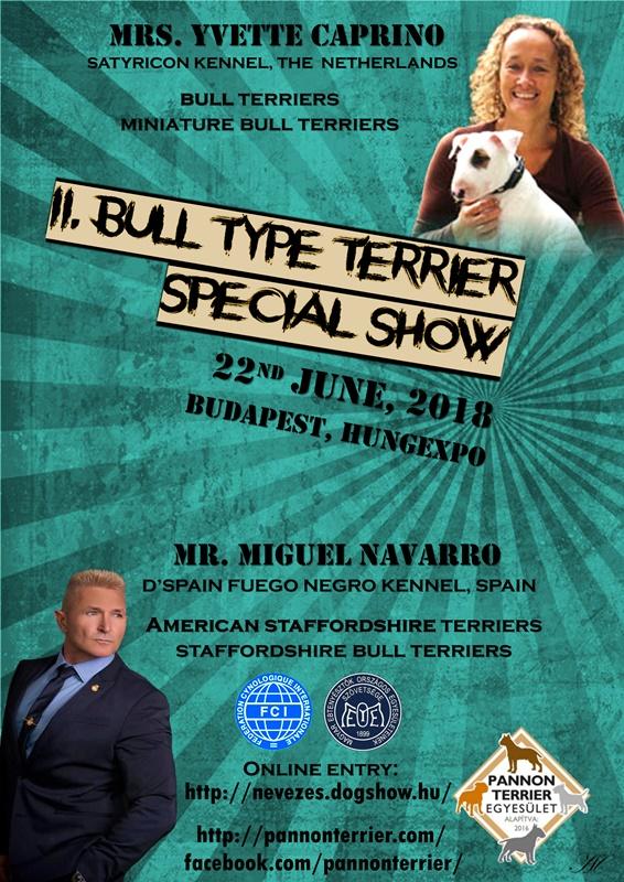 II. Bull Típusú terrier Show !
